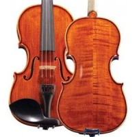 violin-hofner-as160-v